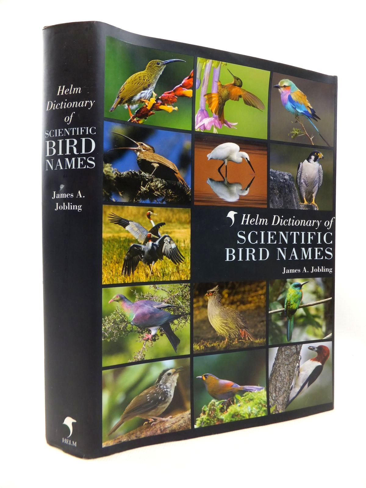 Photo of THE HELM DICTIONARY OF SCIENTIFIC BIRD NAMES: FROM AALGE TO ZUSII written by Jobling, James A. published by Christopher Helm (STOCK CODE: 1815193)  for sale by Stella & Rose's Books