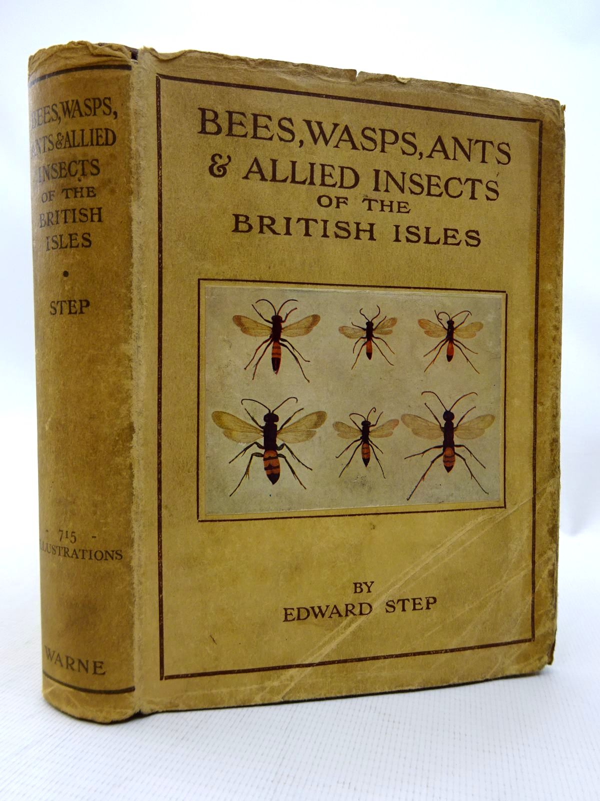 Photo of BEES, WASPS, ANTS & ALLIED INSECTS OF THE BRITISH ISLES written by Step, Edward published by Frederick Warne & Co Ltd. (STOCK CODE: 1815812)  for sale by Stella & Rose's Books