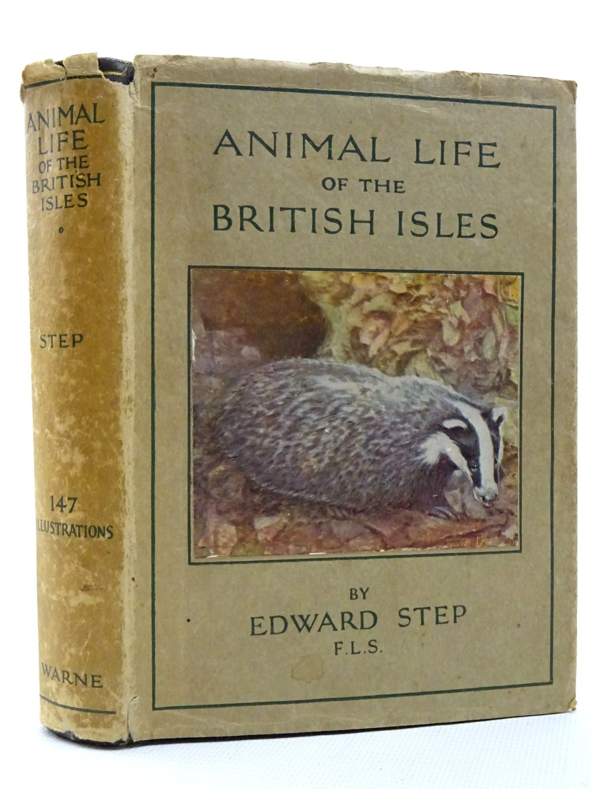 Photo of ANIMAL LIFE OF THE BRITISH ISLES written by Step, Edward published by Frederick Warne & Co Ltd. (STOCK CODE: 1815917)  for sale by Stella & Rose's Books