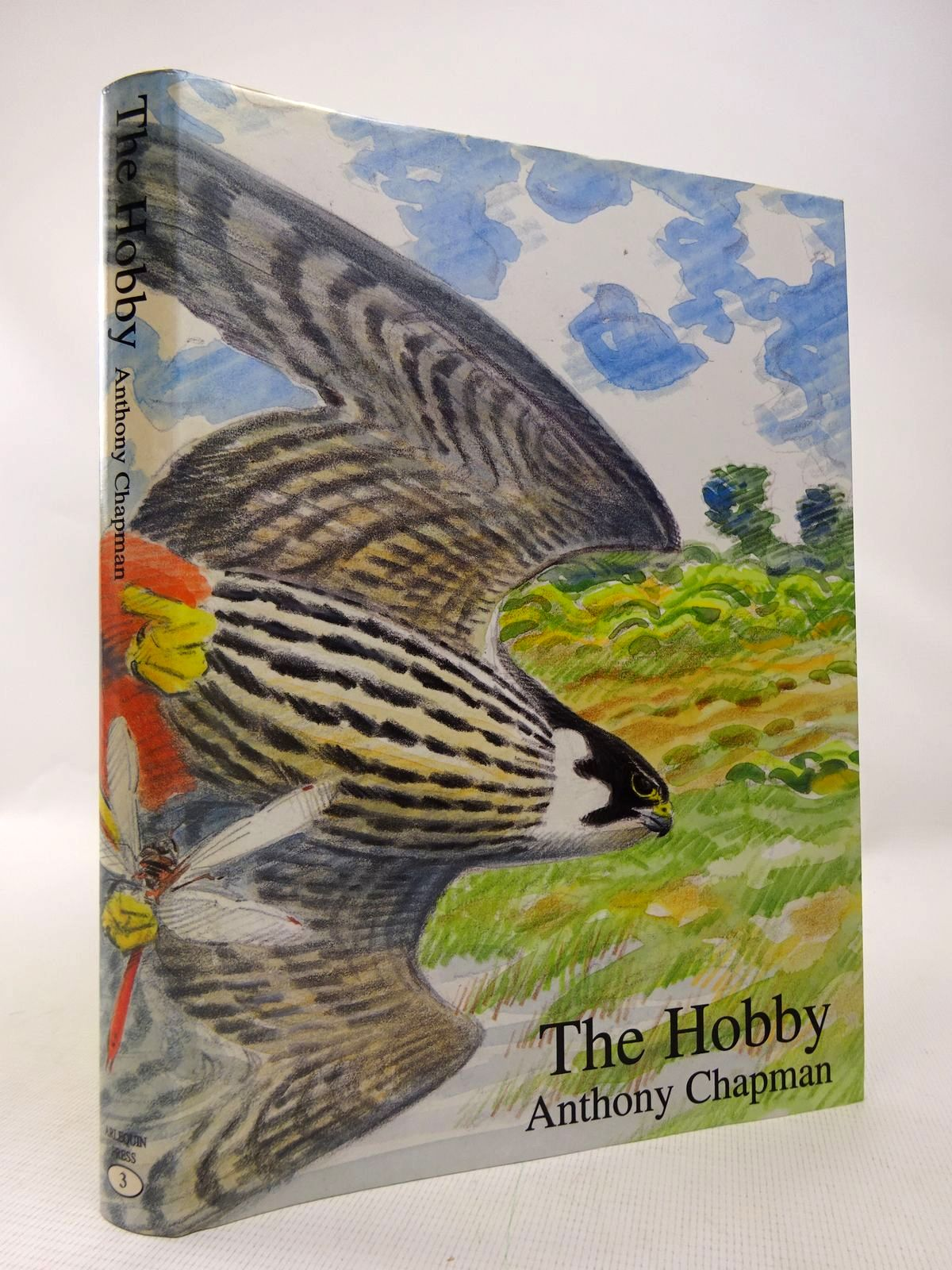 Photo of THE HOBBY written by Chapman, Anthony illustrated by Pearson, Bruce published by Arlequin Press (STOCK CODE: 1816589)  for sale by Stella & Rose's Books