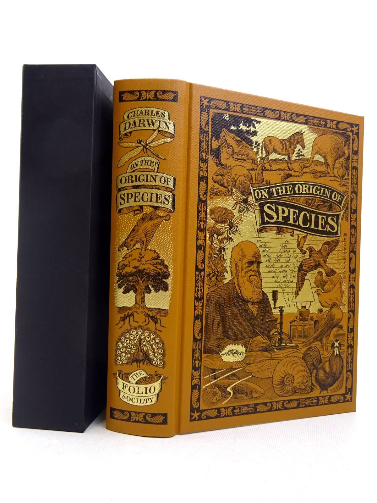 Photo of ON THE ORIGIN OF SPECIES BY MEANS OF NATURAL SELECTION written by Darwin, Charles<br />Keynes, Richard published by Folio Society (STOCK CODE: 1817130)  for sale by Stella & Rose's Books