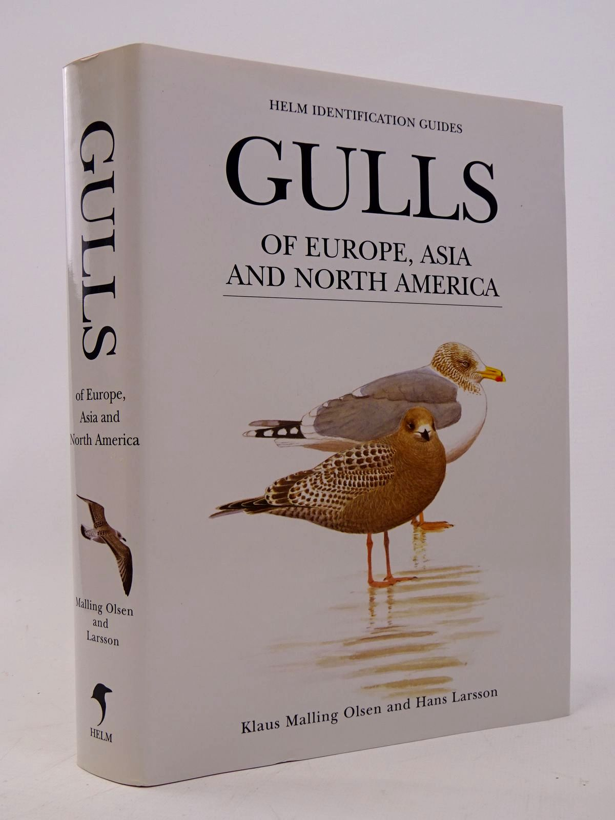 Photo of GULLS OF EUROPE, ASIA AND NORTH AMERICA (HELM IDENTIFICATION GUIDES) written by Olsen, Klaus Malling illustrated by Larsson, Hans published by Christopher Helm (STOCK CODE: 1817568)  for sale by Stella & Rose's Books