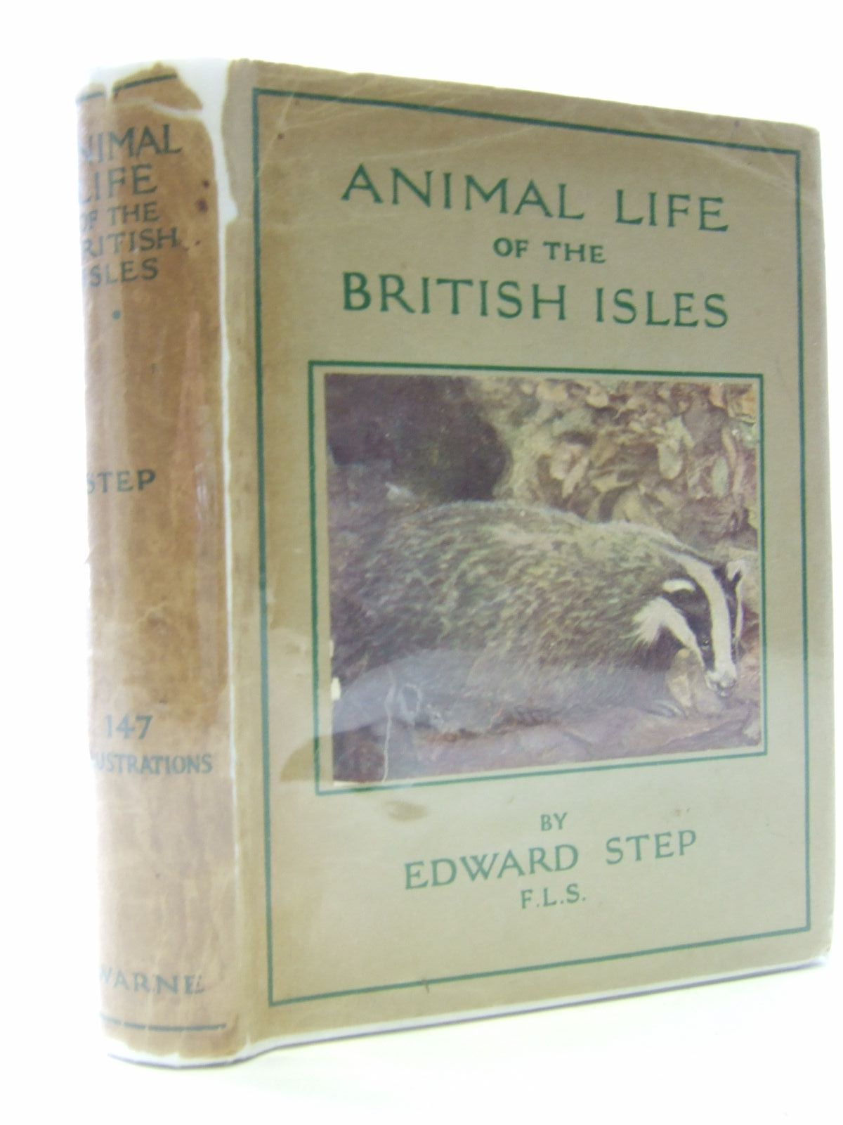 Photo of ANIMAL LIFE OF THE BRITISH ISLES written by Step, Edward published by Frederick Warne & Co Ltd. (STOCK CODE: 2106809)  for sale by Stella & Rose's Books