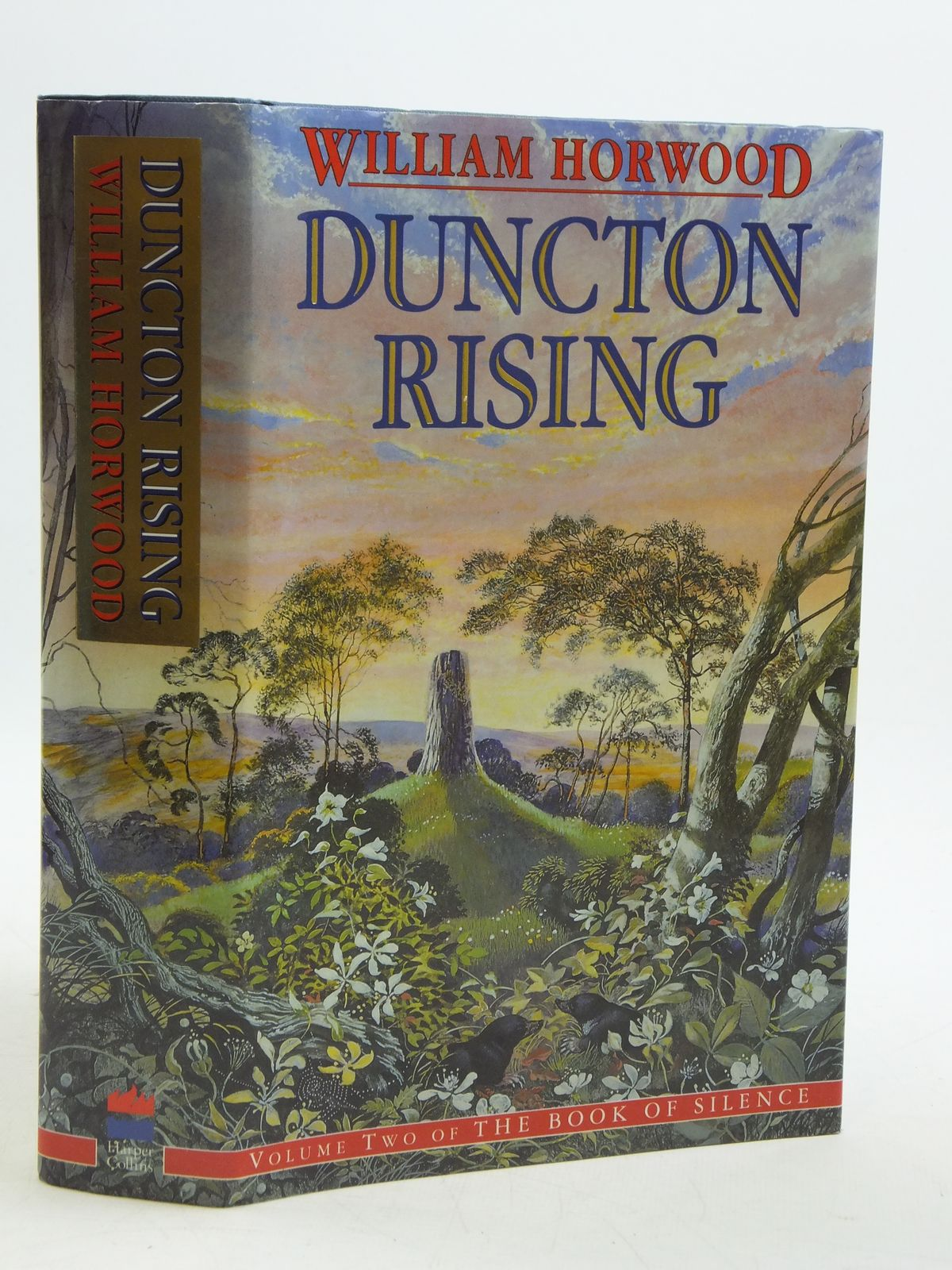 Photo of DUNCTON RISING written by Horwood, William published by Harper Collins (STOCK CODE: 2110716)  for sale by Stella & Rose's Books