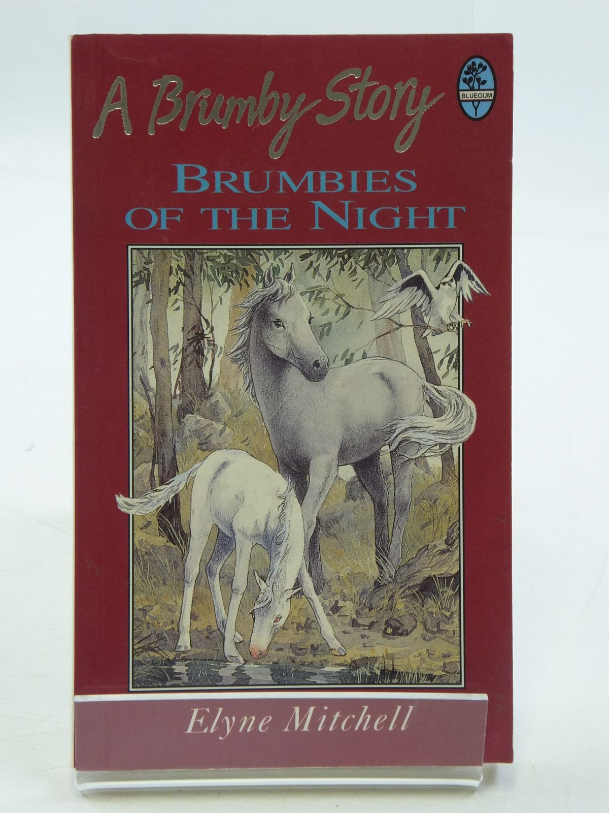 Photo of BRUMBIES OF THE NIGHT