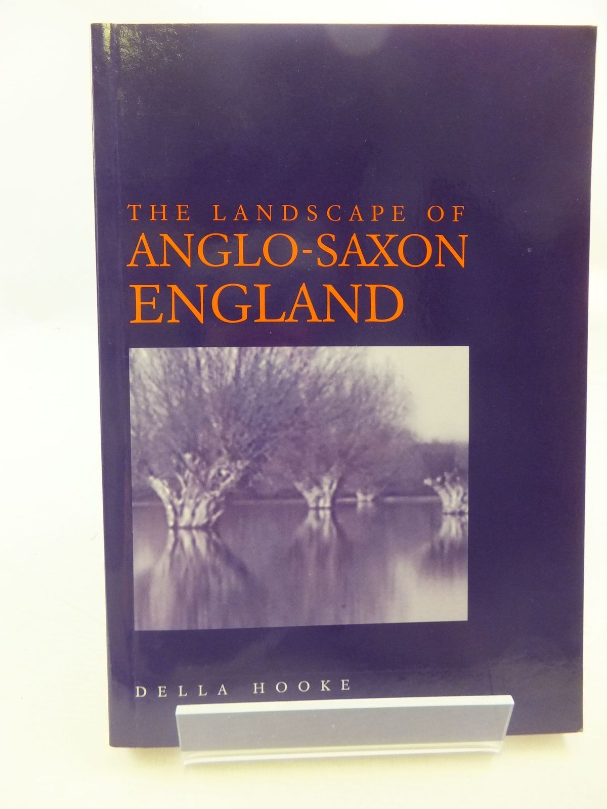 Photo of THE LANDSCAPE OF ANGLO-SAXON ENGLAND