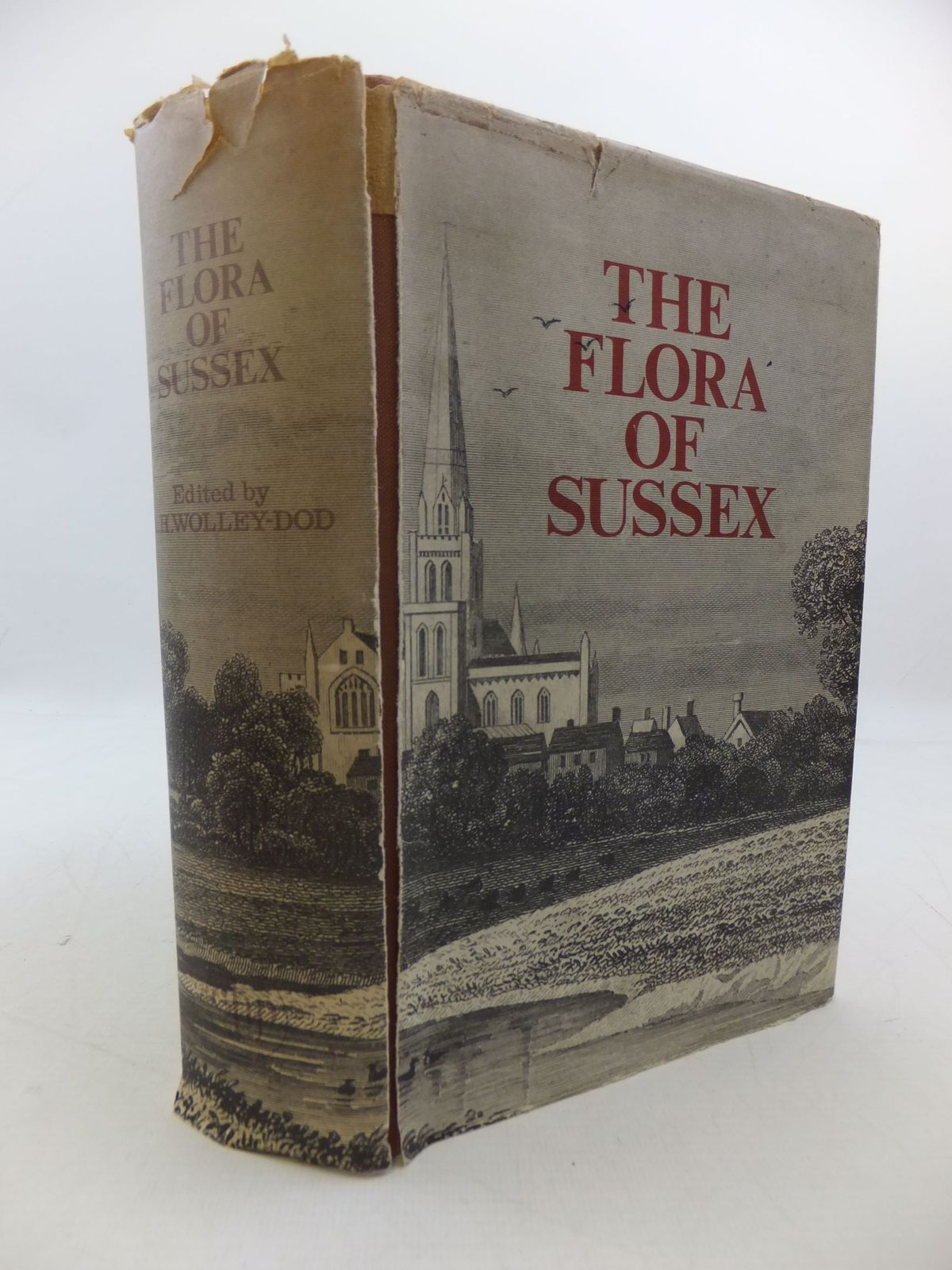 Photo of FLORA OF SUSSEX written by Wolley-Dod, A.H. published by Chatford House Press Ltd. (STOCK CODE: 2112338)  for sale by Stella & Rose's Books