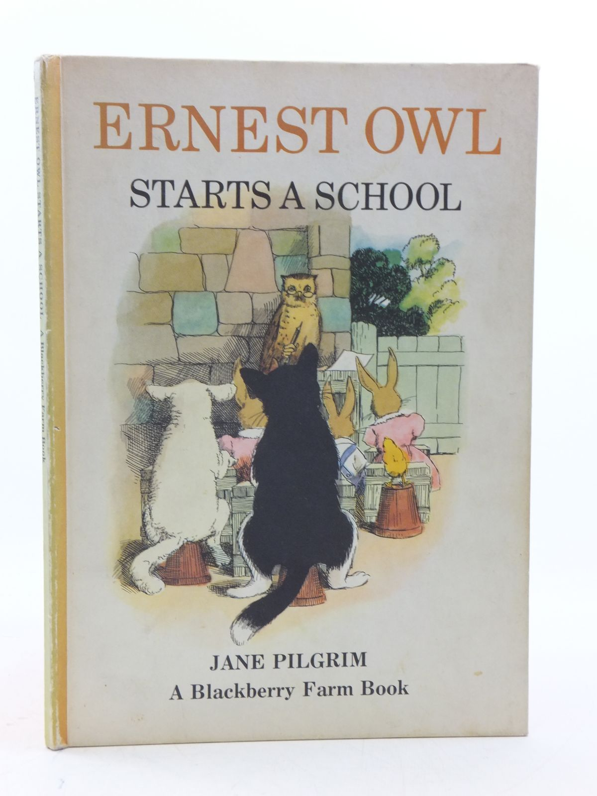 Photo of ERNEST OWL STARTS A SCHOOL written by Pilgrim, Jane illustrated by May, F. Stocks published by Brockhampton Press, The Potato Press (STOCK CODE: 2112871)  for sale by Stella & Rose's Books
