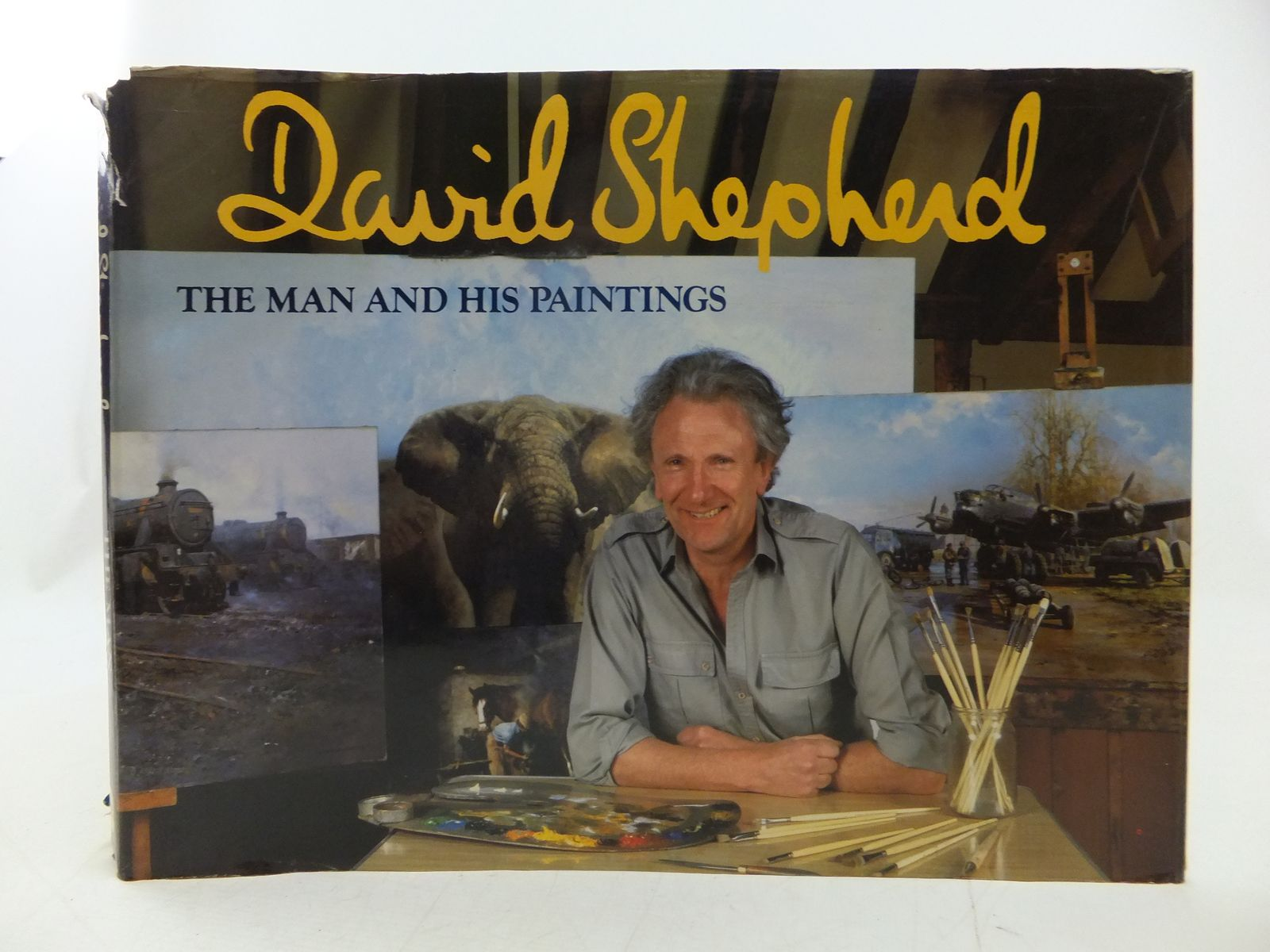 Photo of DAVID SHEPHERD THE MAN AND HIS PAINTINGS written by Shepherd, David illustrated by Shepherd, David published by David & Charles (STOCK CODE: 2113166)  for sale by Stella & Rose's Books