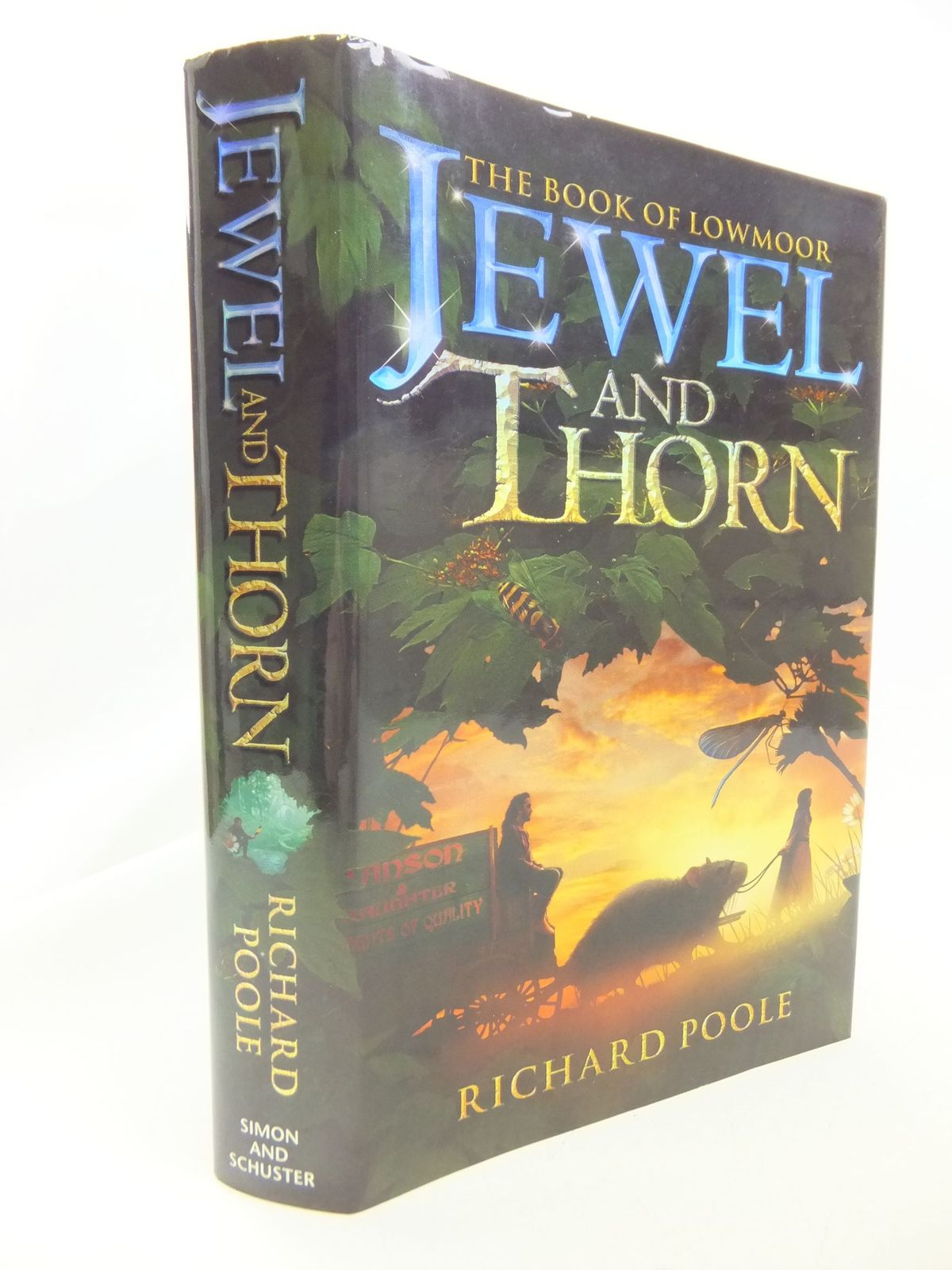 Photo of JEWEL AND THORN written by Poole, Richard published by Simon & Schuster (STOCK CODE: 2114521)  for sale by Stella & Rose's Books