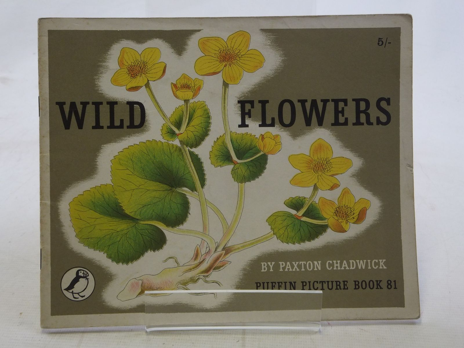 Photo of WILD FLOWERS