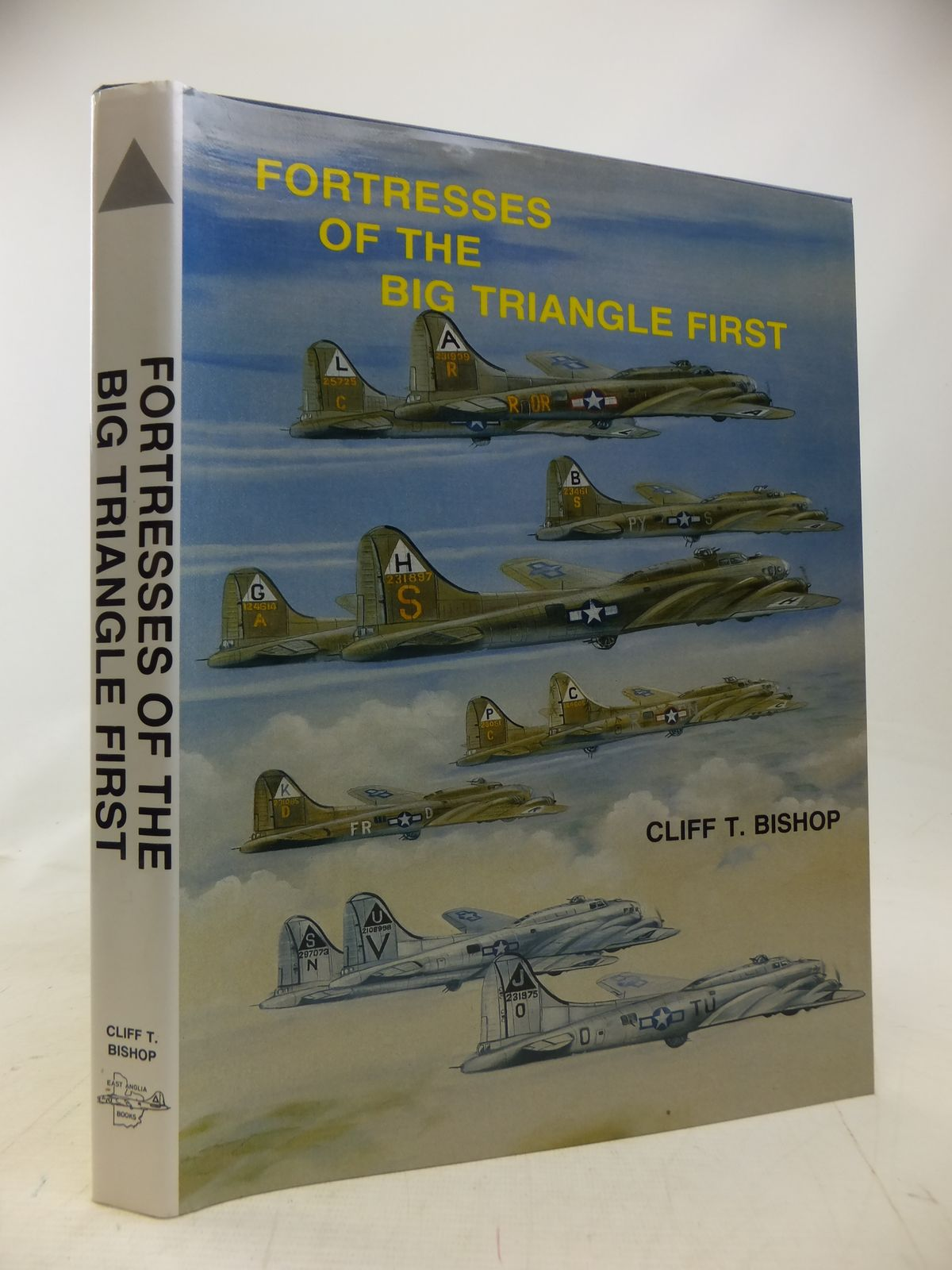Photo of FORTRESSES OF THE BIG TRIANGLE FIRST written by Bishop, Cliff T. published by East Anglia Books (STOCK CODE: 2115273)  for sale by Stella & Rose's Books