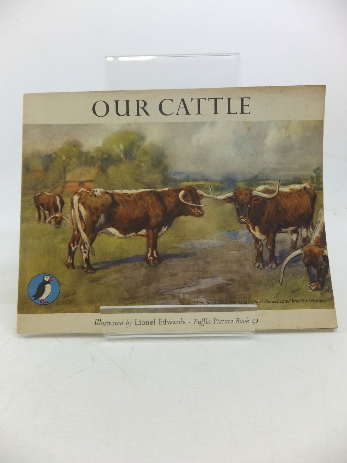 Photo of OUR CATTLE