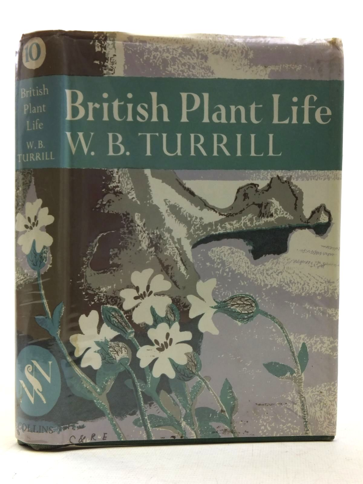 Photo of BRITISH PLANT LIFE (NN 10) written by Turrill, W.B. published by Collins (STOCK CODE: 2116169)  for sale by Stella & Rose's Books