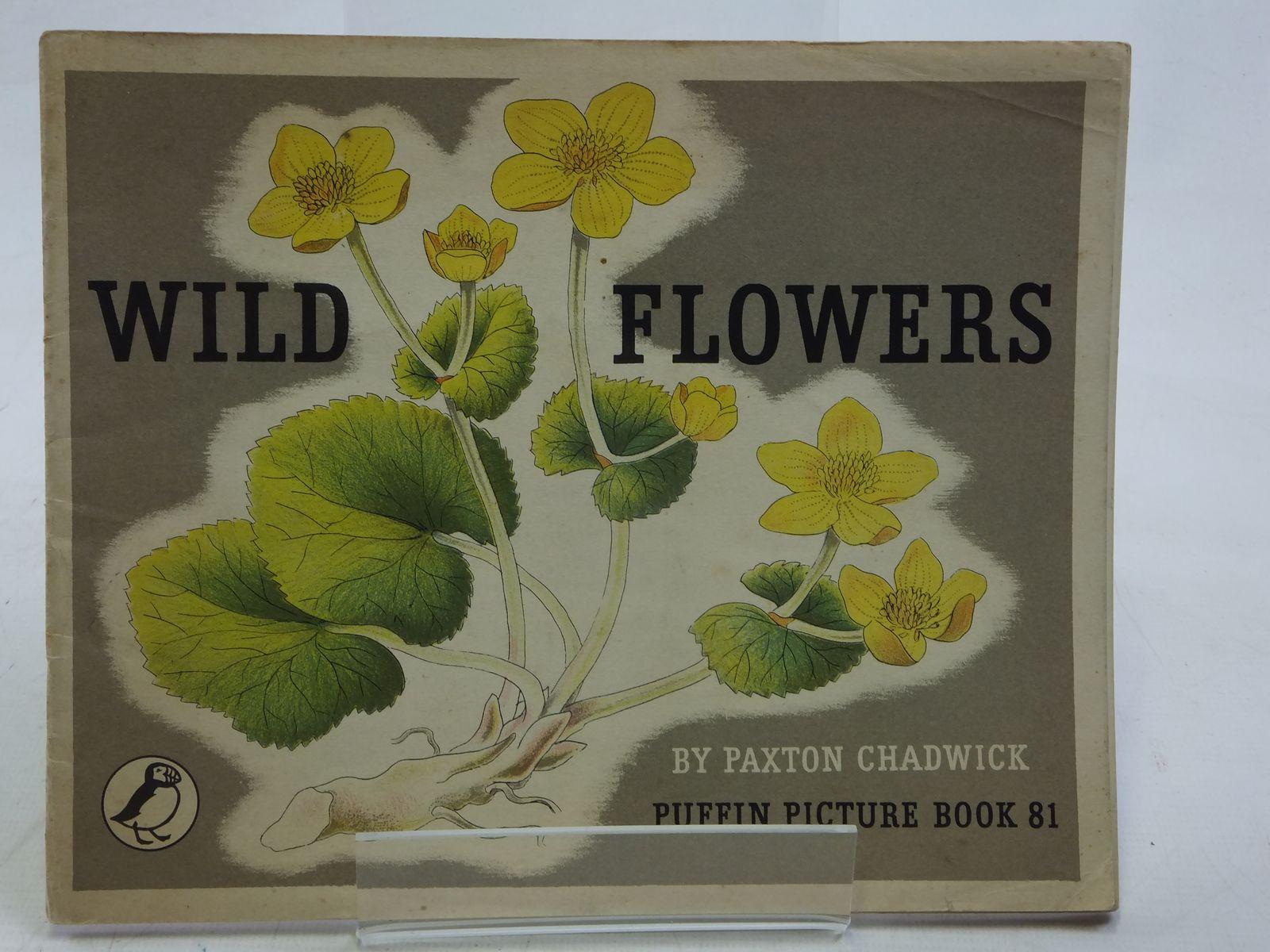 Photo of WILD FLOWERS