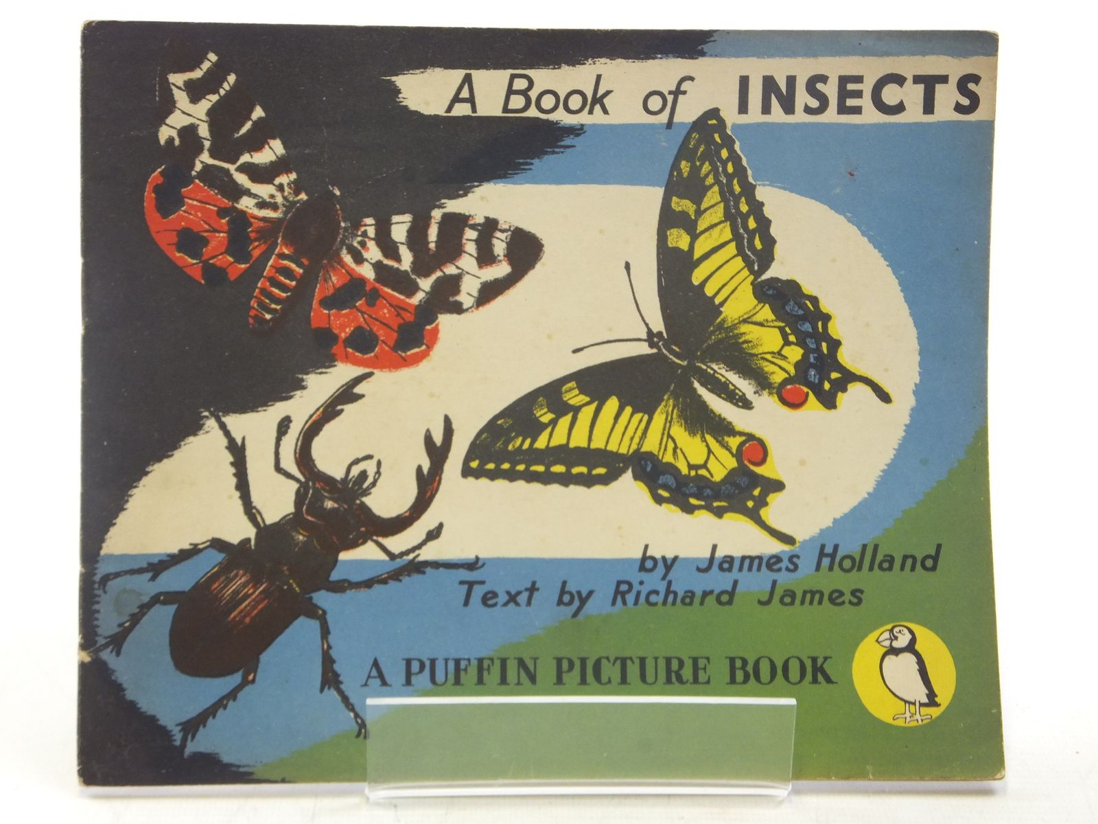 Photo of A BOOK OF INSECTS