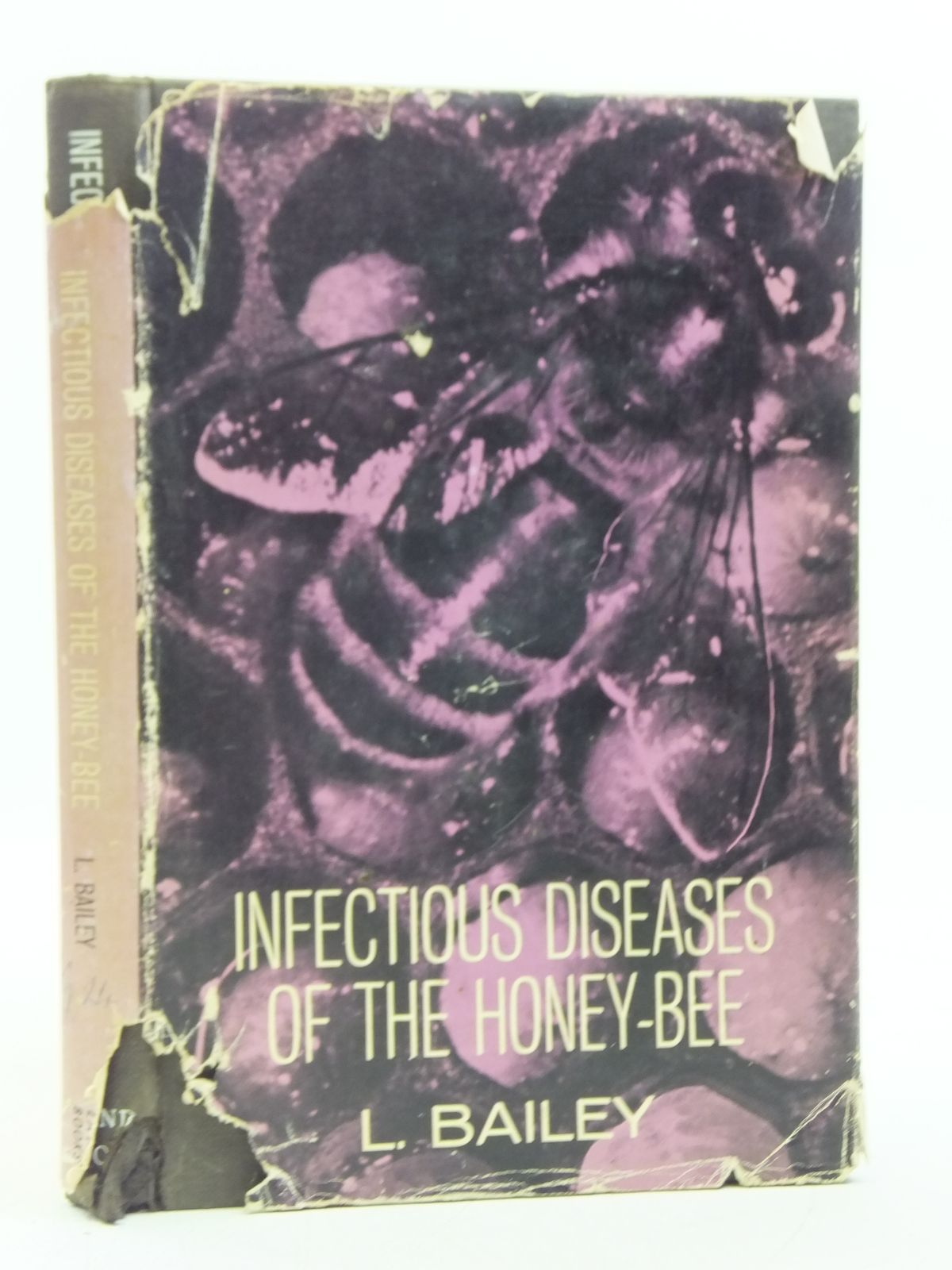 Photo of INFECTIOUS DISEASES OF THE HONEY-BEE written by Bailey, Leslie illustrated by Spradbery, J. Philip published by Land Books (STOCK CODE: 2119554)  for sale by Stella & Rose's Books