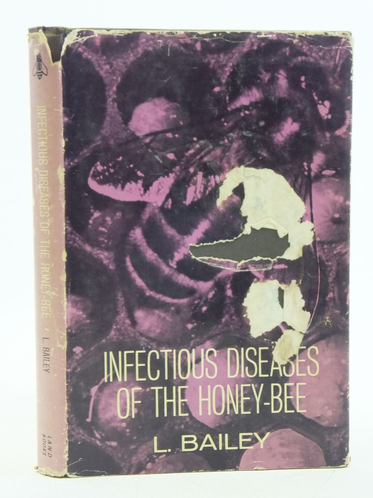 Photo of INFECTIOUS DISEASES OF THE HONEY-BEE written by Bailey, Leslie illustrated by Spradbery, J. Philip published by Land Books (STOCK CODE: 2119571)  for sale by Stella & Rose's Books