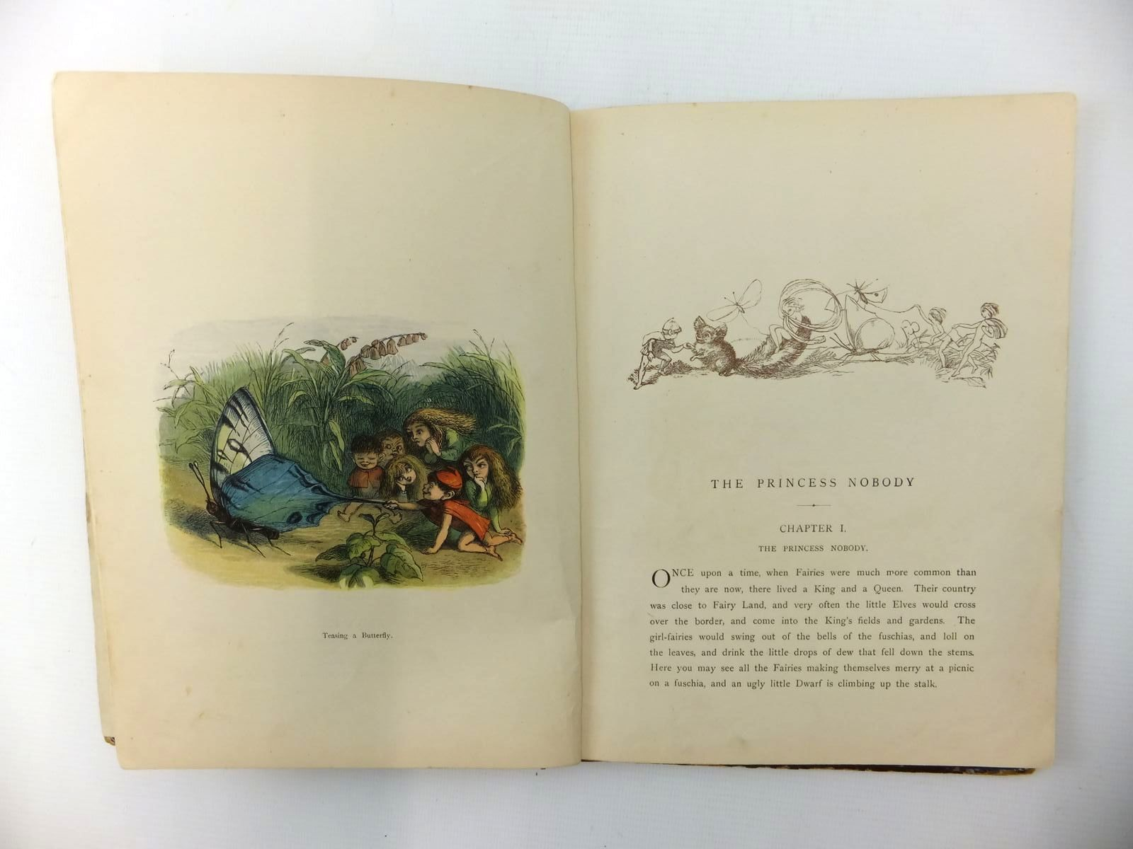 Photo of THE PRINCESS NOBODY written by Lang, Andrew illustrated by Doyle, Richard<br />Evans, Edmund published by Longmans, Green & Co. (STOCK CODE: 2123409)  for sale by Stella & Rose's Books