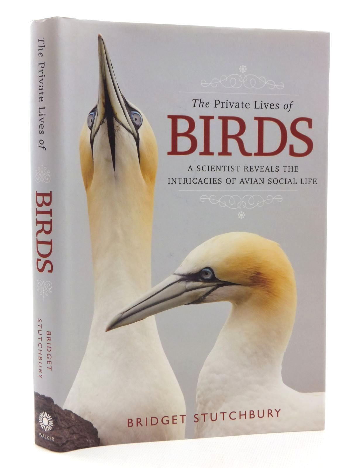 Photo of THE PRIVATE LIVES OF BIRDS written by Stutchbury, Bridget published by Walker And Company (STOCK CODE: 2124022)  for sale by Stella & Rose's Books