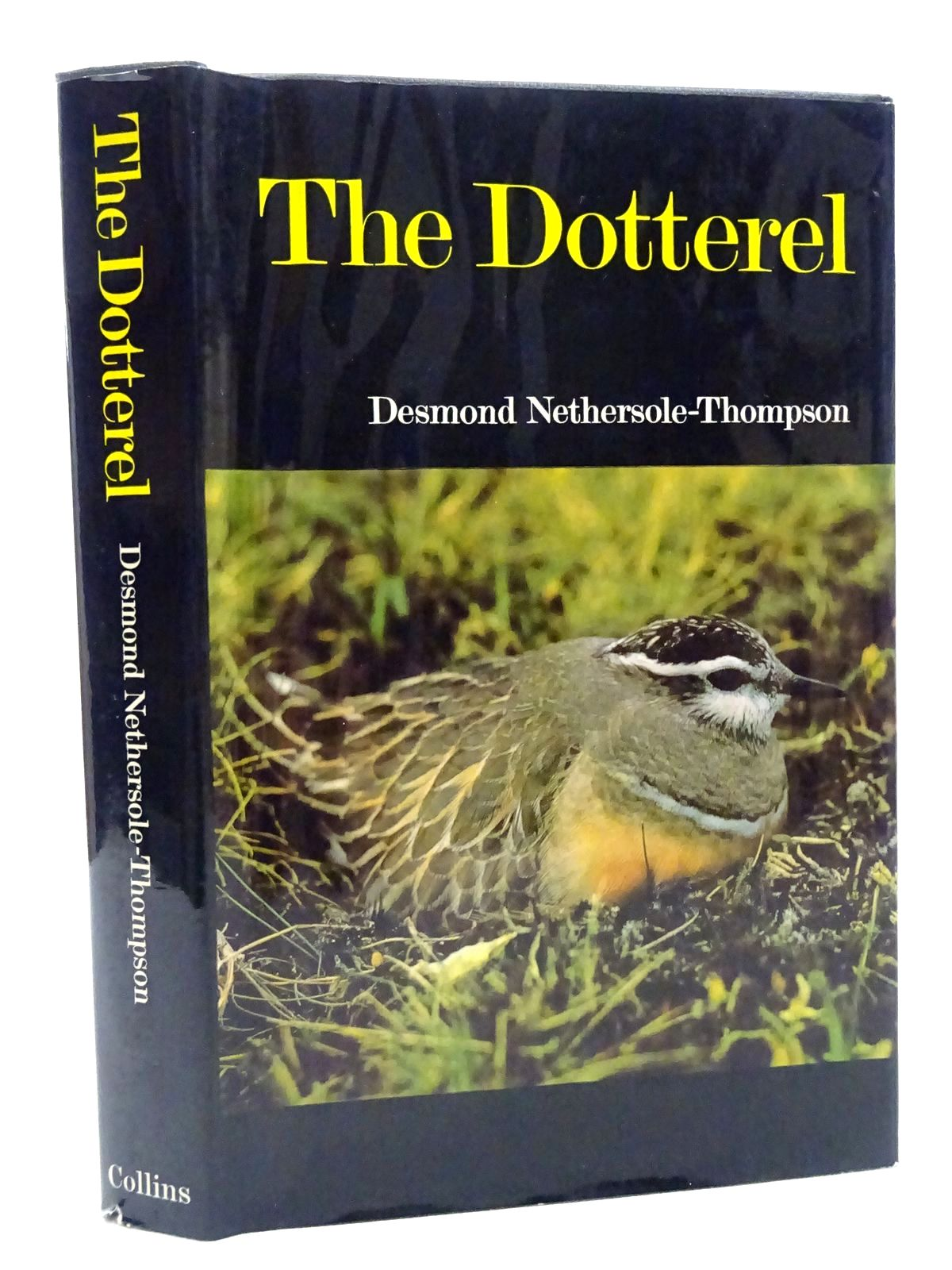 Photo of THE DOTTEREL written by Nethersole-Thompson, Desmond published by Collins (STOCK CODE: 2124716)  for sale by Stella & Rose's Books