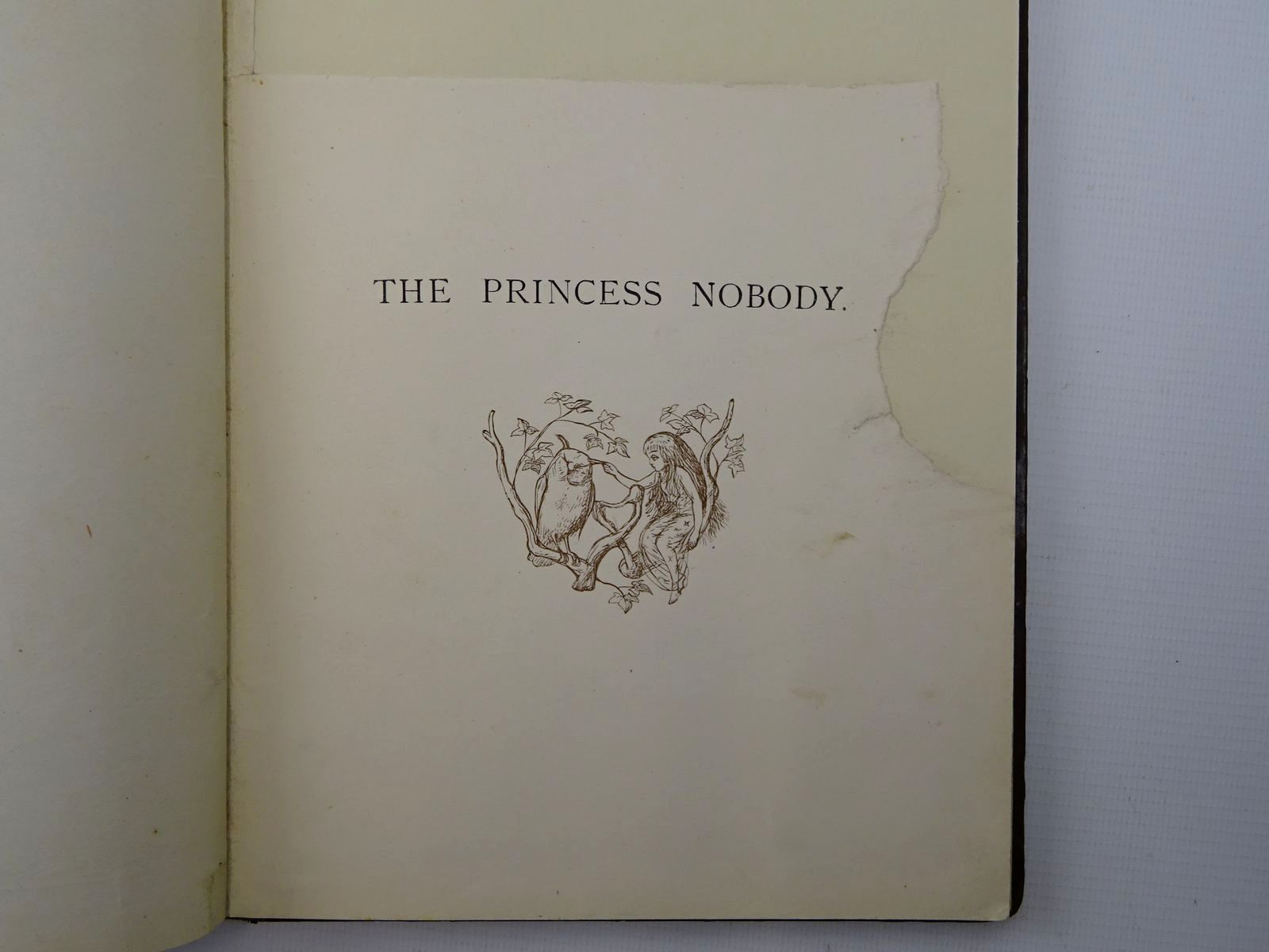 Photo of THE PRINCESS NOBODY written by Lang, Andrew illustrated by Doyle, Richard<br />Evans, Edmund published by Longmans, Green & Co. (STOCK CODE: 2124728)  for sale by Stella & Rose's Books