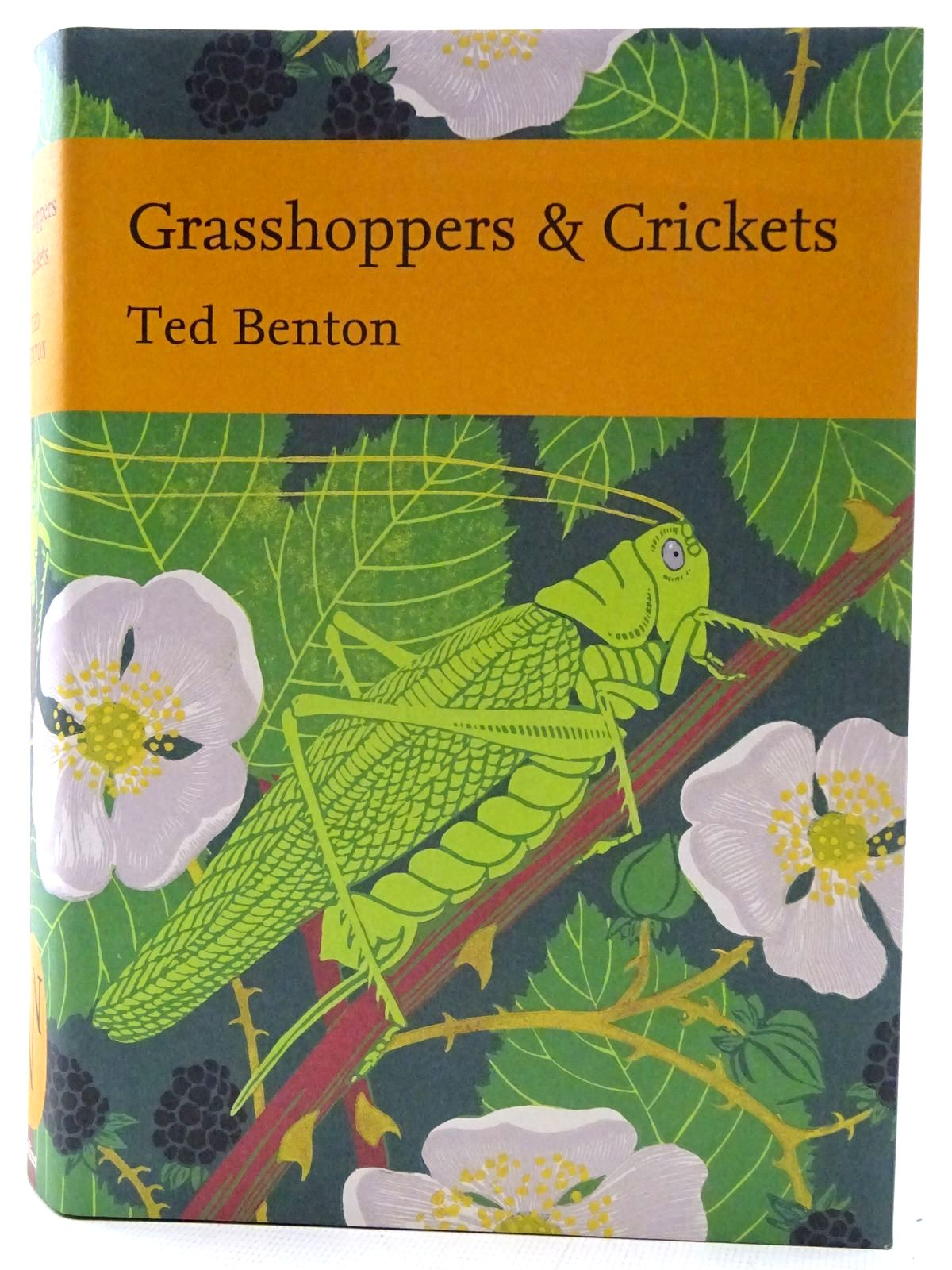Photo of GRASSHOPPERS & CRICKETS (NN120) written by Benton, Ted published by Collins (STOCK CODE: 2126099)  for sale by Stella & Rose's Books