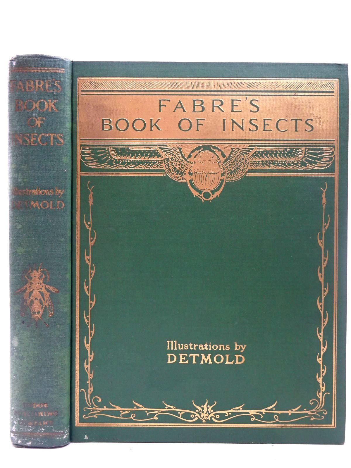 Photo of FABRE'S BOOK OF INSECTS written by Stawell, Mrs. Rodolph<br />Fabre, J.H. illustrated by Detmold, Edward J. published by Tudor Publishing Company (STOCK CODE: 2126832)  for sale by Stella & Rose's Books