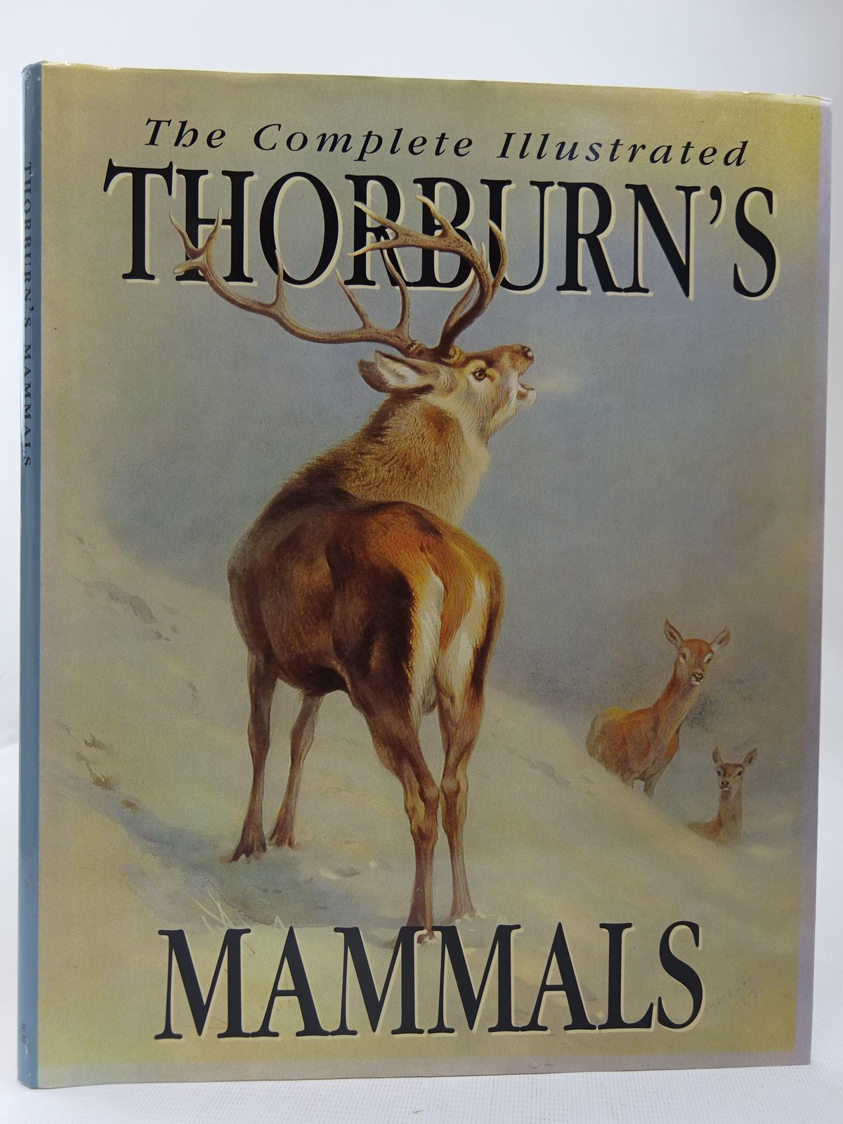 Photo of THE COMPLETE ILLUSTRATED THORBURN'S MAMMALS written by Corbet, Gordon B. illustrated by Thorburn, Archibald published by Beaver Publishing Limited (STOCK CODE: 2127979)  for sale by Stella & Rose's Books