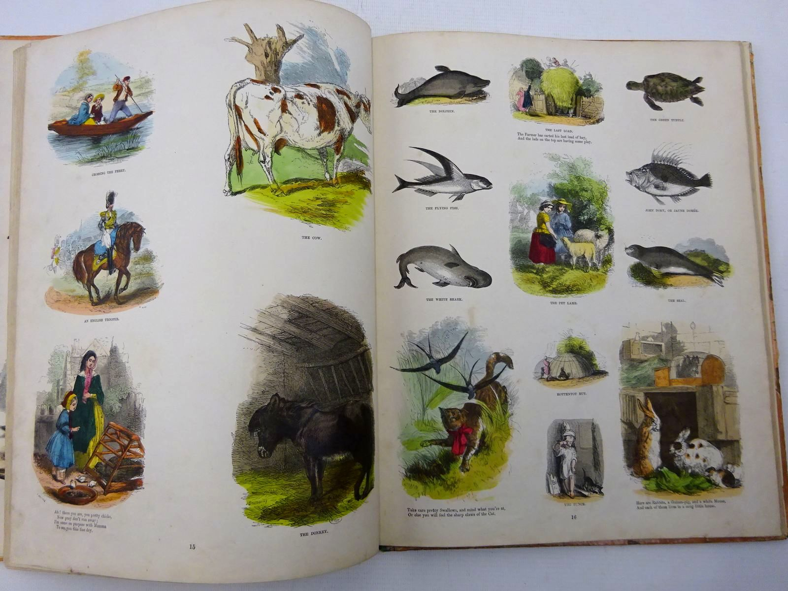 Photo of THE FAVOURITE PICTURE BOOK illustrated by Absolon, John<br />Browne, Halbot Knight Phiz<br />Gilbert, John<br />Landseer, Thomas<br />Leech, John<br />Prout, J.S.<br />Weir, Harrison<br />et al.,  published by Grant and Griffith (STOCK CODE: 2128661)  for sale by Stella & Rose's Books
