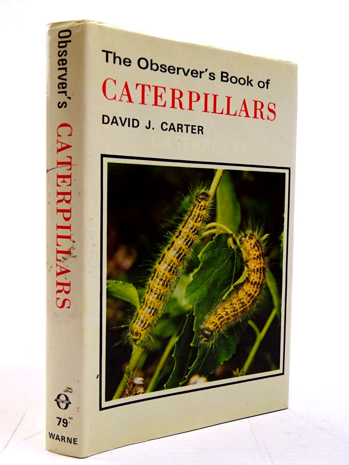 Photo of THE OBSERVER'S BOOK OF CATERPILLARS written by Carter, D.J. illustrated by Riley, Gordon published by Frederick Warne (STOCK CODE: 2131090)  for sale by Stella & Rose's Books