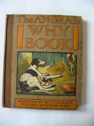 Photo of THE ANIMAL WHY BOOK written by Pycraft, W.P. illustrated by Noble, Edwin published by Wells Gardner, Darton & Co. Limited (STOCK CODE: 380042)  for sale by Stella & Rose's Books