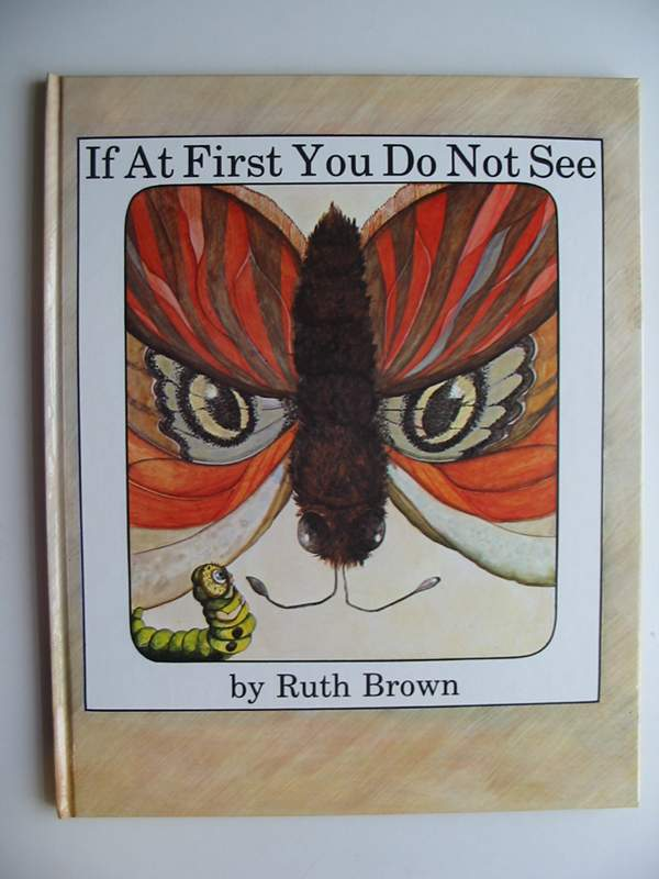Photo of IF AT FIRST YOU DO NOT SEE written by Brown, Ruth illustrated by Brown, Ruth published by Andersen Press (STOCK CODE: 446656)  for sale by Stella & Rose's Books