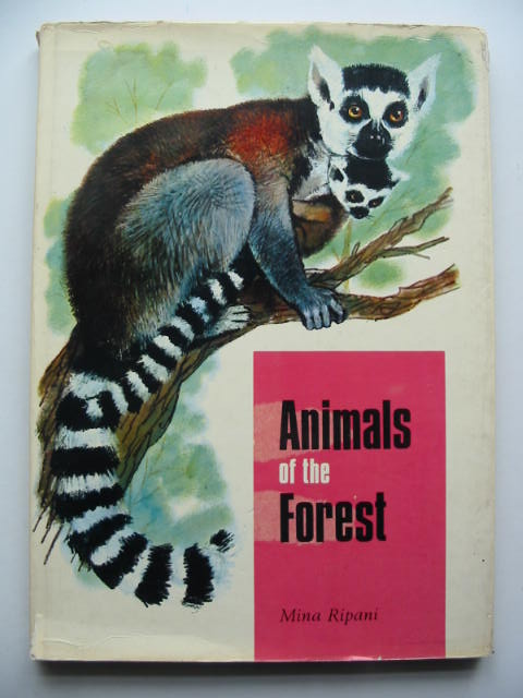 Photo of ANIMALS OF THE FOREST written by Ripani, Mina illustrated by Muller, Regina published by Rylee Ltd. (STOCK CODE: 449488)  for sale by Stella & Rose's Books