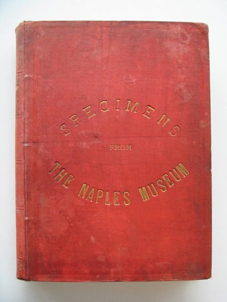 Photo of SPECIMENS FROM THE NAPLES MUSEUM written by Monaco, Domenico<br />Rolfe, E. Neville published by William Clowes & Sons Ltd. (STOCK CODE: 567200)  for sale by Stella & Rose's Books