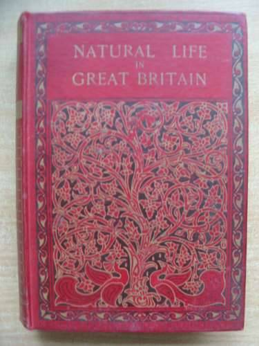 Photo of NATURAL LIFE IN GREAT BRITAIN ANIMALS AND BIRDS written by Simpson, A. Nicol<br />Westell, W. Percival published by C. Combridge (STOCK CODE: 584710)  for sale by Stella & Rose's Books