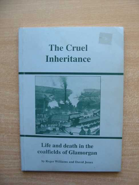 Photo of THE CRUEL INHERITANCE written by Williams, Roger<br />Jones, David published by Village Publishing (STOCK CODE: 586436)  for sale by Stella & Rose's Books