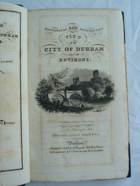 Photo of HISTORICAL AND DESCRIPTIVE VIEW OF THE CITY OF DURHAM AND ITS ENVIRONS written by Allan, George published by T. Hoggett (STOCK CODE: 597356)  for sale by Stella & Rose's Books