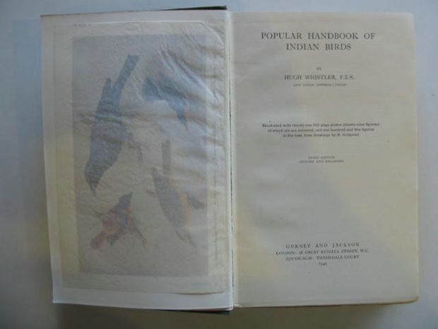 Photo of POPULAR HANDBOOK OF INDIAN BIRDS written by Whistler, Hugh published by Gurney and Jackson (STOCK CODE: 616118)  for sale by Stella & Rose's Books