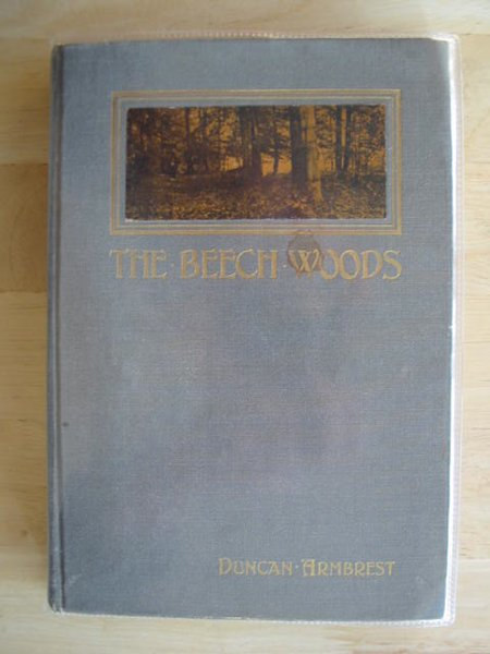 Photo of THE BEECH WOODS written by Armbrest, Duncan published by William Briggs (STOCK CODE: 688493)  for sale by Stella & Rose's Books