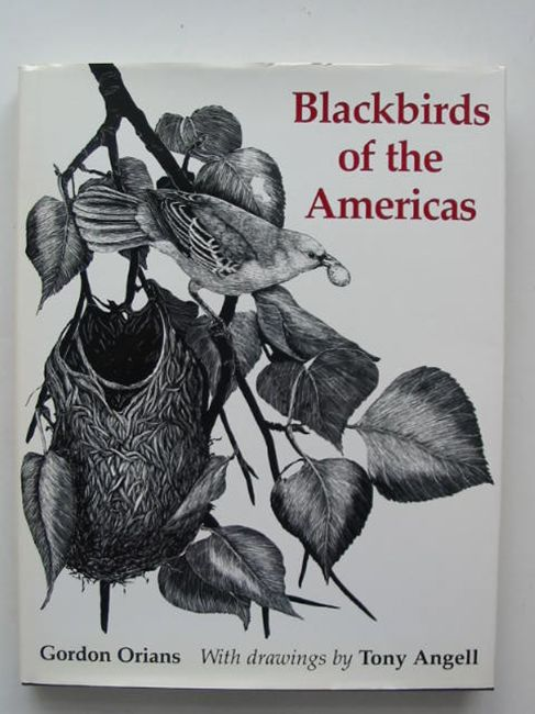 Photo of BLACKBIRDS OF THE AMERICAS written by Orians, Gordon H. illustrated by Angell, Tony published by University of Washington Press (STOCK CODE: 823807)  for sale by Stella & Rose's Books