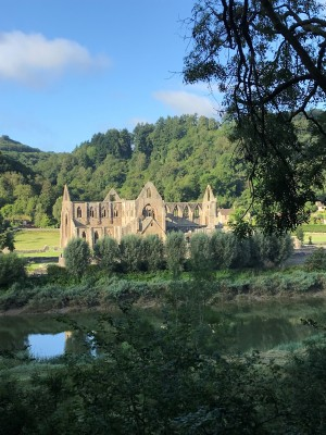 Tintern Abbey from Cycle Path