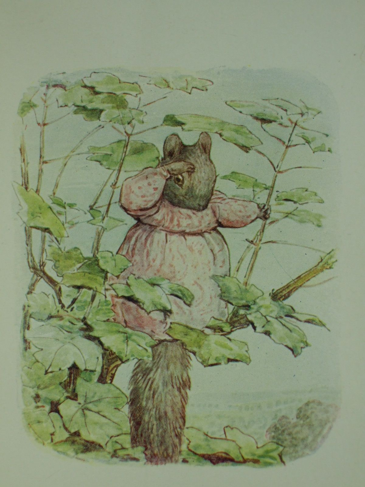 Photo of THE TALE OF TIMMY TIPTOES written by Potter, Beatrix illustrated by Potter, Beatrix published by Frederick Warne & Co. (STOCK CODE: 1108307)  for sale by Stella & Rose's Books