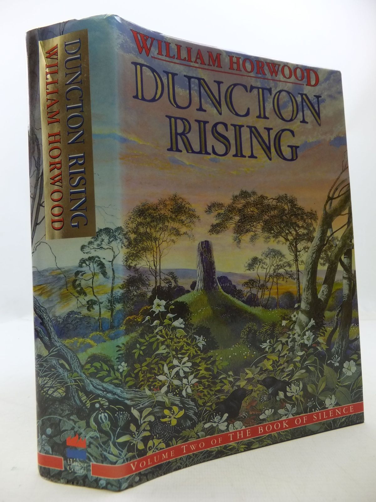 Photo of DUNCTON RISING written by Horwood, William published by Harper Collins (STOCK CODE: 1108708)  for sale by Stella & Rose's Books
