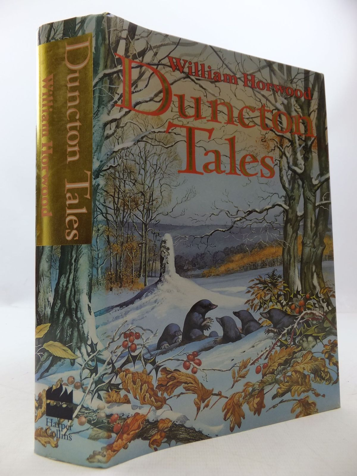 Photo of DUNCTON TALES written by Horwood, William published by Harper Collins (STOCK CODE: 1108709)  for sale by Stella & Rose's Books