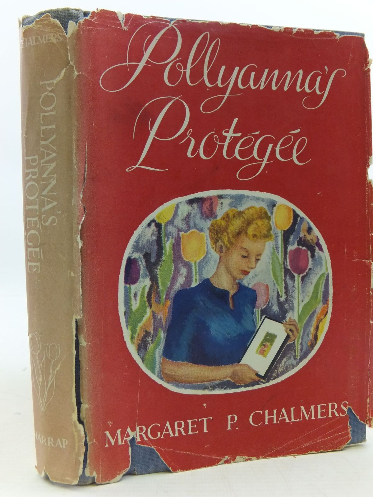 Photo of POLLYANNA'S PROTEGEE- Stock Number: 1108775