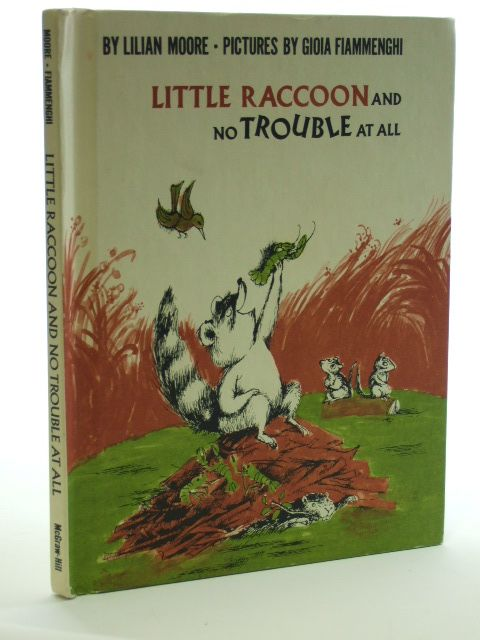 Photo of LITTLE RACCOON AND NO TROUBLE AT ALL- Stock Number: 1206260