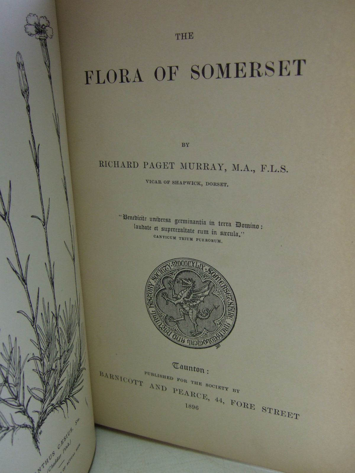 Photo of THE FLORA OF SOMERSET written by Murray. Richard Paget,  published by Somersetshire Archaeological Natural History Society (STOCK CODE: 1206402)  for sale by Stella & Rose's Books