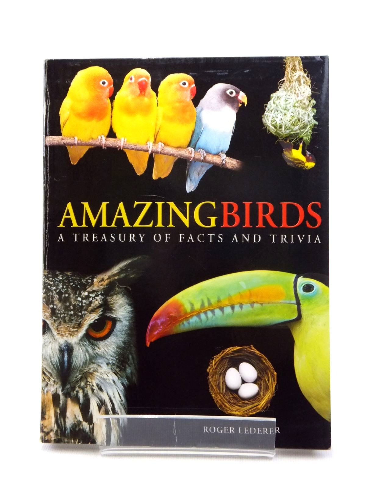 Photo of AMAZING BIRDS- Stock Number: 1208761
