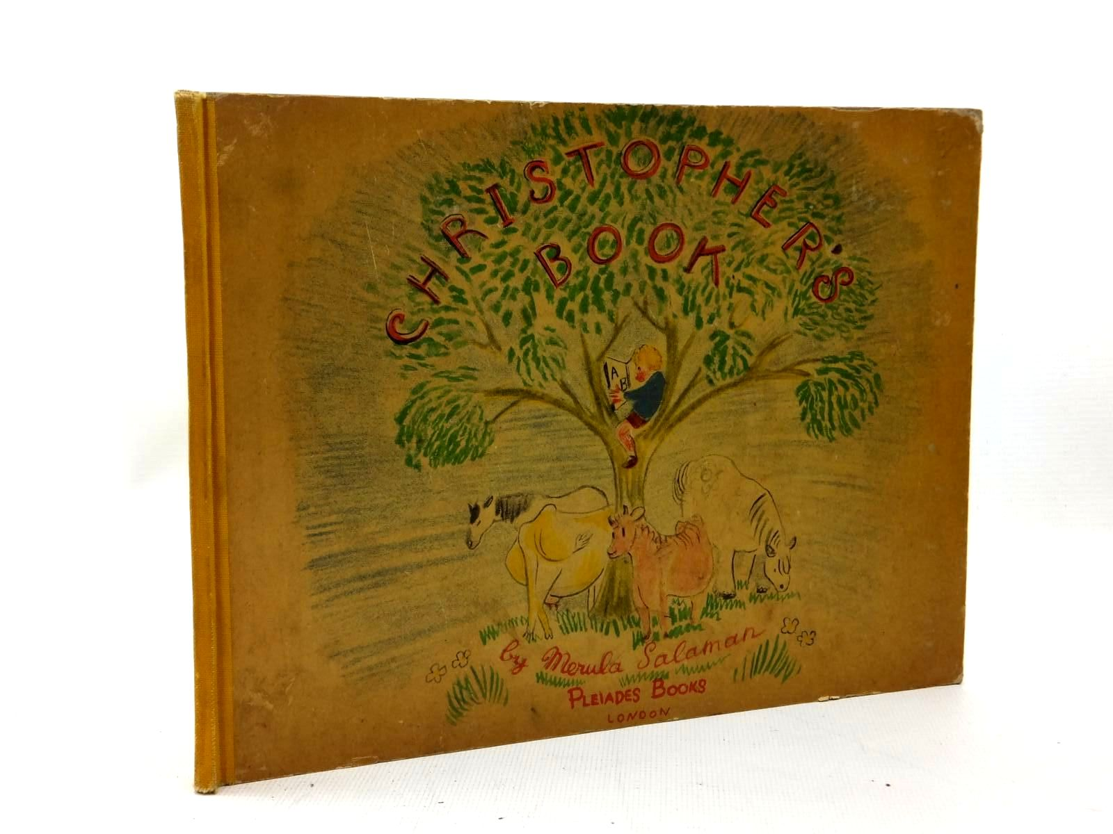 Photo of CHRISTOPHER'S BOOK written by Salaman, Merula illustrated by Salaman, Merula published by Pleiades Books (STOCK CODE: 1208819)  for sale by Stella & Rose's Books